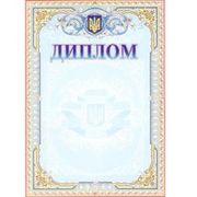 Диплом А4 №139 з гербом